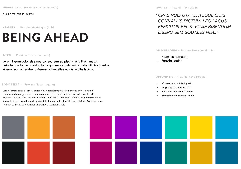 huisstijl lettertype en kleuren Broad Horizon